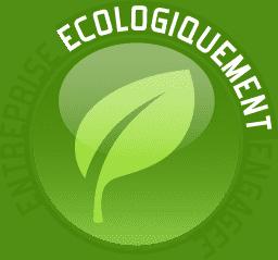 hébergement web écologique infomaniak : logo pour une entreprise verte est engagé.